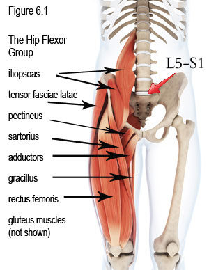Pain from Tight Hip Flexors – Lowbackpainprogram